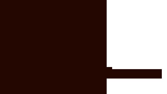 Logo Singla